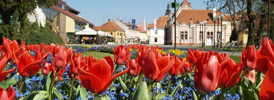 hrvatski-cvijetnjak